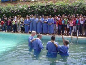 Zé Queijo wordt gedoopt